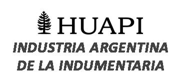HUAPI